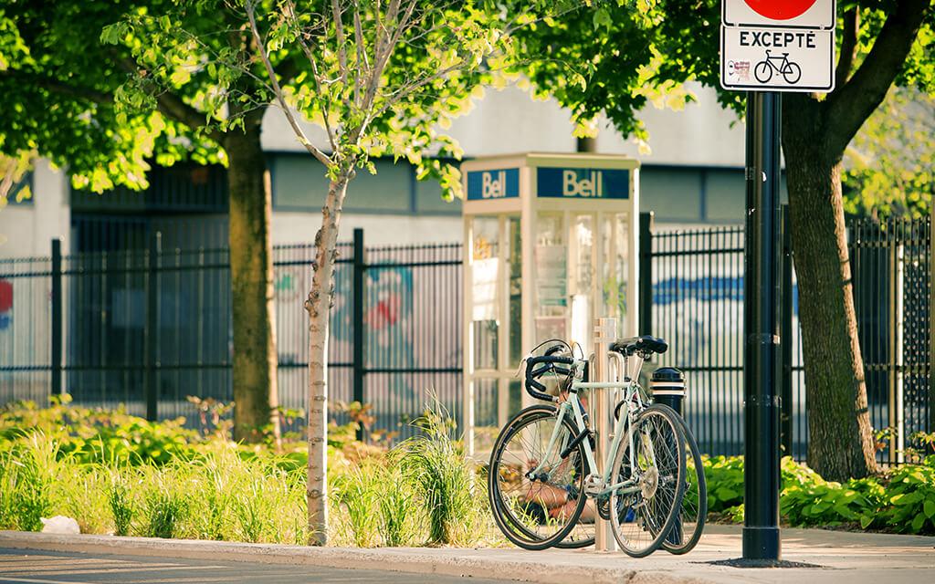 bicycle1.jpg